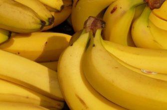 Роскачество обнаружило пестициды в органических бананах из Эквадора :: Общество :: РБК